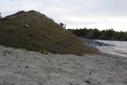strand-dugnad-30-6-2011-019-komp