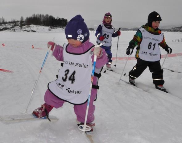 Lions Ski Run 2013 (