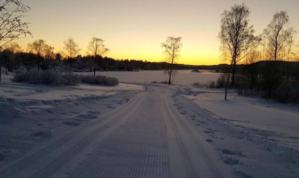 Bilde fra Fornebulandet vel, som viser stemningen i Koksabukta, rett etter at sporet var satt.